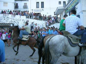 Horse-riding contest